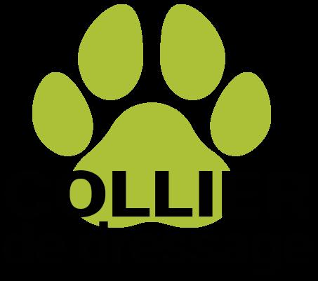 Cropped Logo Collier De Dressage.png